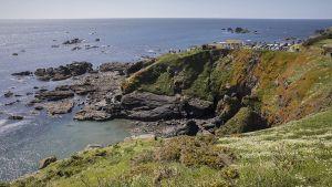 Cornwall29.jpg