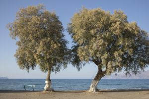Crete_18.jpg