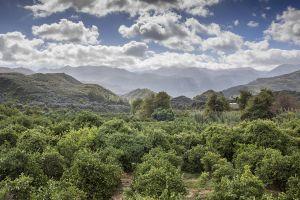Crete_29.jpg